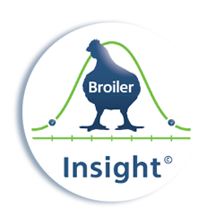 Broiler-Insight