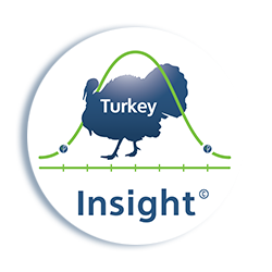 Turkey-Insight